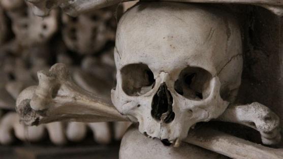 skull-crossbone